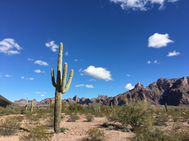 Kofa Wildlife Refuge
