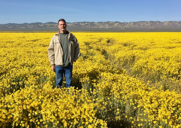 soda lake super bloom