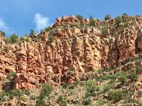 Verde Canyon Railroad Trip