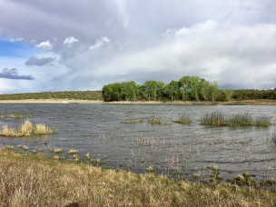 free campsites at concho lake
