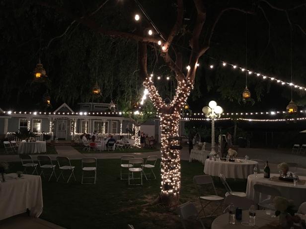 jennas wedding