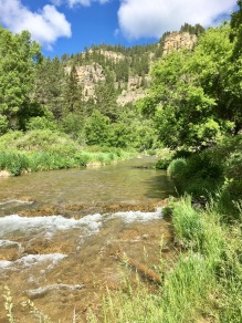 Spearfish Canyon