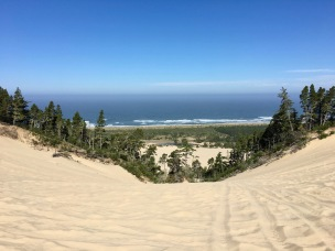 Pacific Ocean from Oregon Dunes