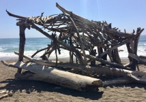 driftwood huts on beach