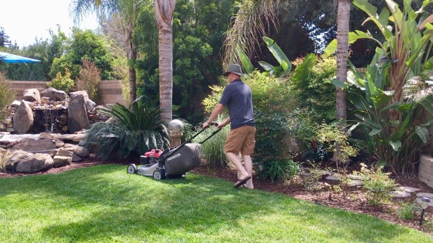 tom mowing lawn last time