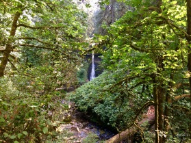 hiking at silver falls waterfalls trails