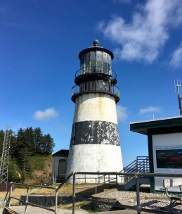lighthouses and forts in cape disappointment & washington
