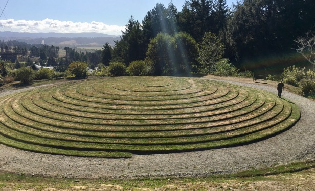 labrynth at humbolt botanical gardens