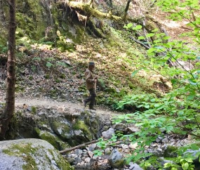 hiking at brandy creek waterfalls in whiskeytown