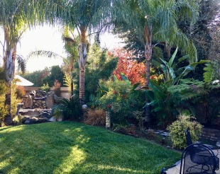 Backyard Kingsburg CA